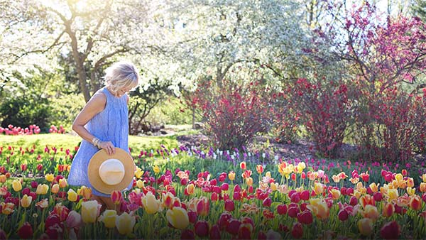 vanjsko-bilje-vrtni-centar-iva2