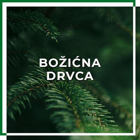 kategorija_bozicna_drvca1