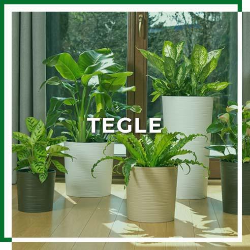 kategorija_tegle