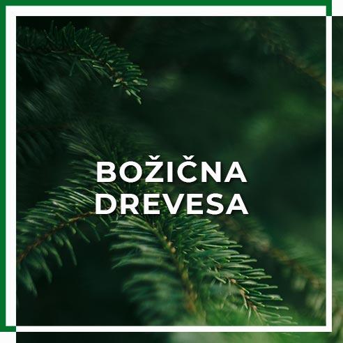 bozicna_drevesa
